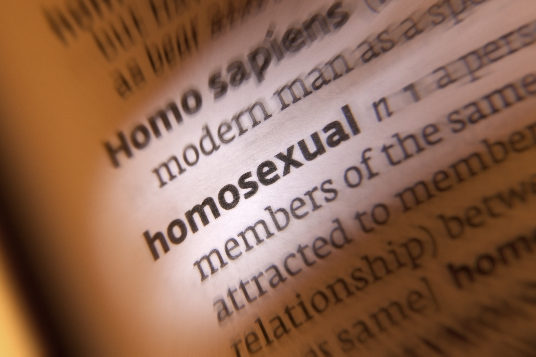 Homosexual - Dictionary Definition